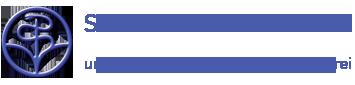 Stiftung Gesundheit Logo